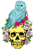 maglietta owl, skull and flowers