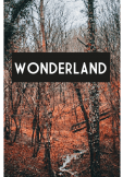 maglietta wonderland forest