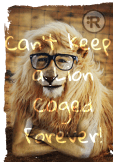 maglietta Racestyle® Can't Keep a Lion Caged Forever