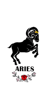 cover Aries - Cover / Hoodie / T-Shirt