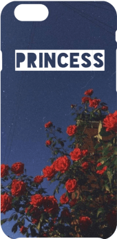 cover Cover Princess
