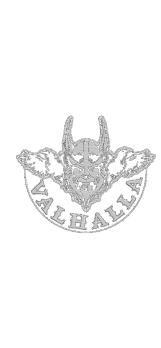 cover Viking Valhalla