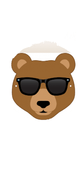 cover cool bear with sunglasses