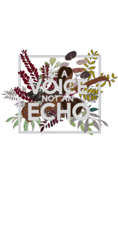 cover Be a Voice, not an Echo