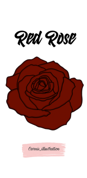 cover Red rose