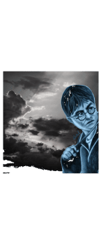 cover Harry Potter portrait