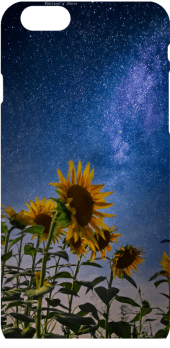 cover Sunflowers under the stars