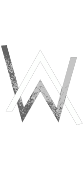 cover Alan Walker Logo