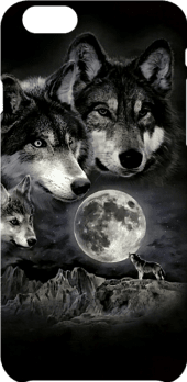 cover Grey Wolfs