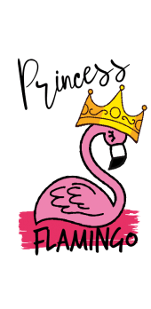 cover Princess Flamingo