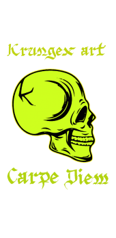 cover Carpe diem skull cover