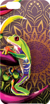 cover red eyed tree frog