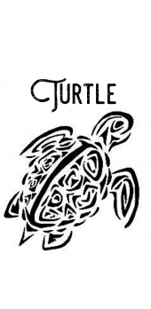 cover Turtle