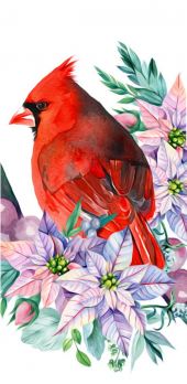 cover Cardinal and Flowers