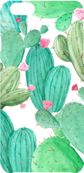 cover cactus pattern