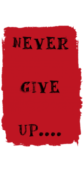 cover NEVER GIVE UP...