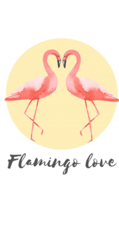 cover Flamingo love