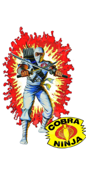 cover Storm Shadow