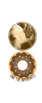 cover Donut Cat