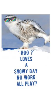cover Hoo Loves a Snowy Day