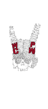 cover Bullet club