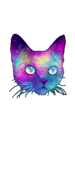 cover Galaxycat