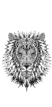 cover Mandala Lion