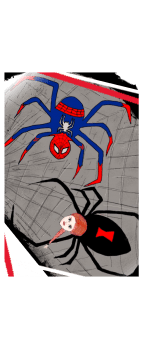 cover spiders