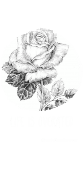 cover overated life