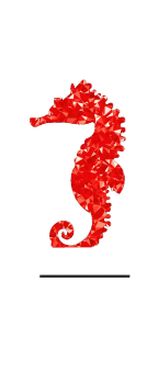 cover Be a SEAHORSE