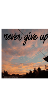 cover never give up