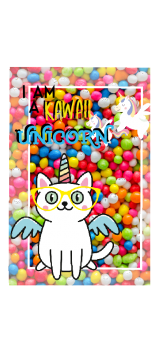 cover Cat unicorn