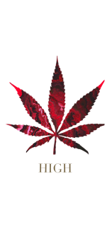 cover HIGH RED