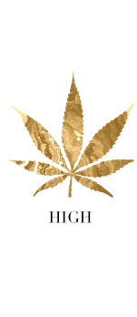 cover HIGH 24K