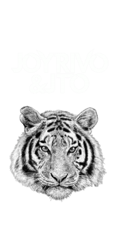 cover Joy Rivo & Jto Original Tiger