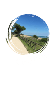 cover t-shirt Bibione