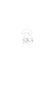 cover boletus hunter