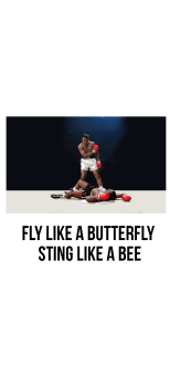 cover fly like a butterfly sting like a bee