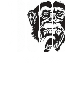 maglietta Viking Monkey