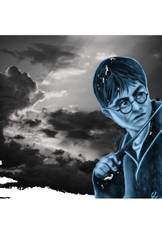 maglietta Harry Potter portrait