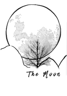 maglietta T-shirt the moon