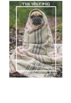 maglietta The holy pug