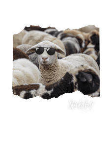 maglietta StickArt - Sheep