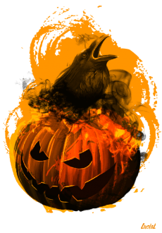 maglietta Pumpkin and crow
