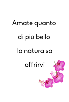 maglietta Love nature