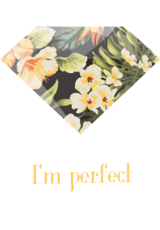 maglietta I'm perfect?