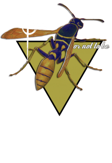 maglietta Wasp and quote