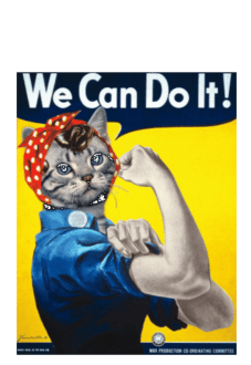 maglietta We Can Do It !