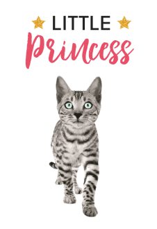 maglietta little princess cat