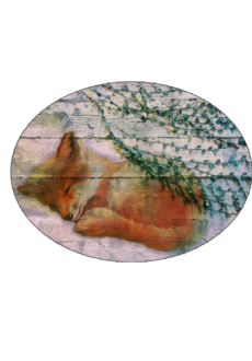 maglietta Sleepy fox